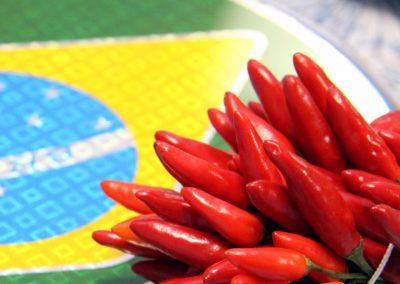 18.01.2019 | Brasilien – Küche mit südamerikanischem Pfiff